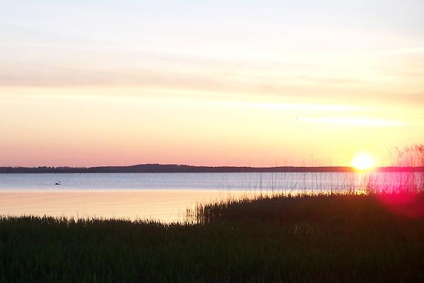 Sonnenuntergang am Achterwasser, Usedom